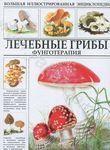 Лечебные грибы. Фунготерапия