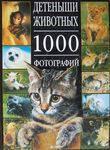 Детеныши животных. 1000 фотографий