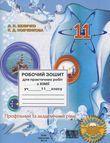 Робочий зошит для практичних робіт з хімії. 11 клас